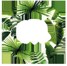 https://btlgroup.com.au/wp-content/uploads/2021/05/our-aim-logo-1.png